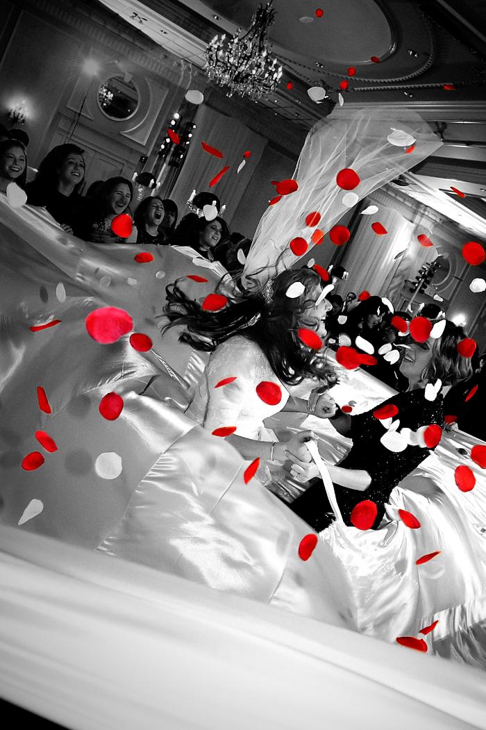 View Weddings Creative