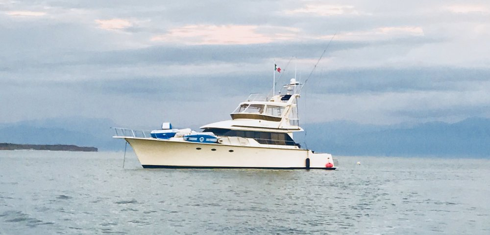 e4cd49a576f5 Costa Azul Yacht Charters - Luxury Fishing Charters   Boat Rentals ...