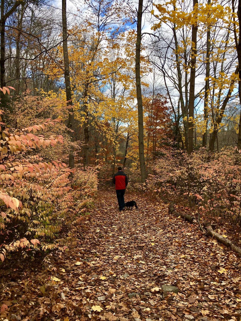 Pequonnock Trail6.jpg