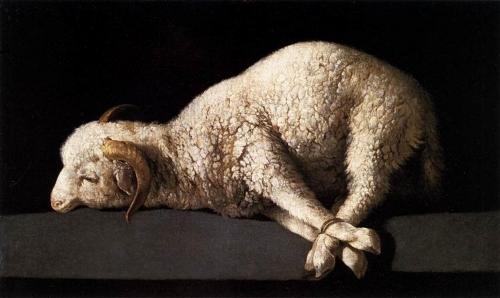 Today's image:  Agnus Dei  by Francisco de Zurbaran ( source )