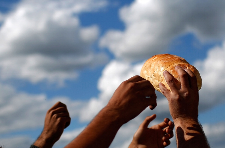 An aid worker distributes bread and supplies to migrants at a transition camp September 7, 2015 in Magyarkanizsa, Serbia.  (source)