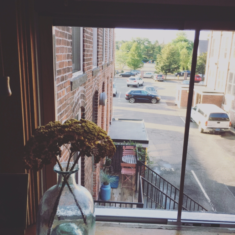 My wonderful kitchen window