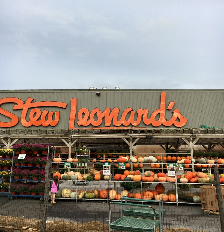 "The original location of Stew Leonard's (in Norwalk). which is a chain of 5 supermarkets in Connecticut and New York State.  Ripley's Believe It or Not!  deemed ""The World's Largest Dairy""."