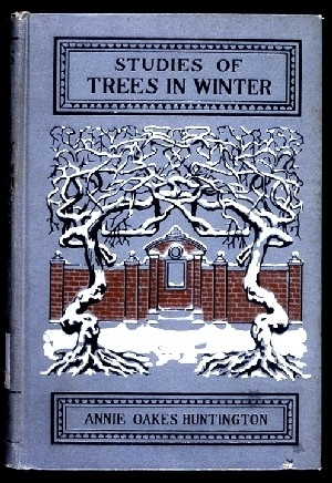 Studies of Trees in Winter