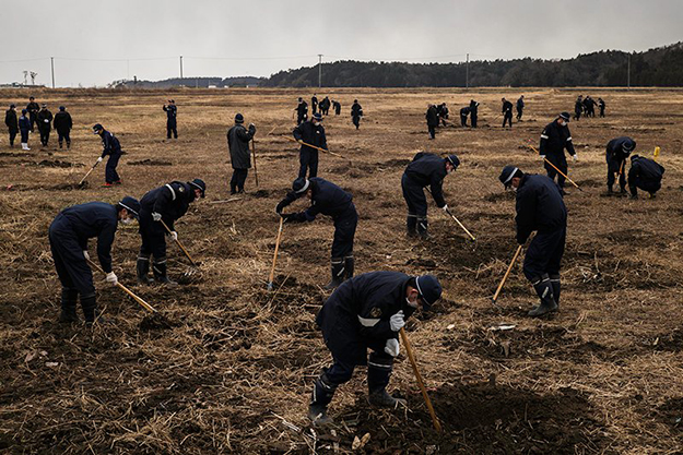 The search for missing persons after the tsunami, which occurred on March 11, 2016, in Japan. photo: Dominik Nar ( source )