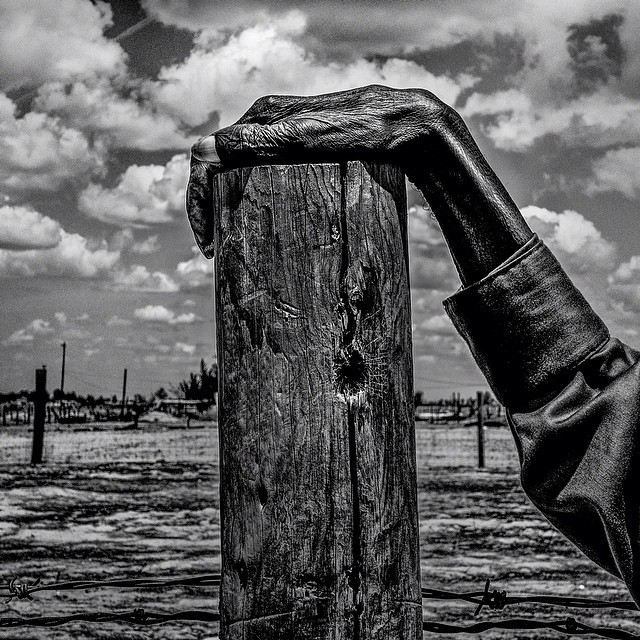 Fence post. Allensworth, CA. by Matt Black  #geographyofpoverty