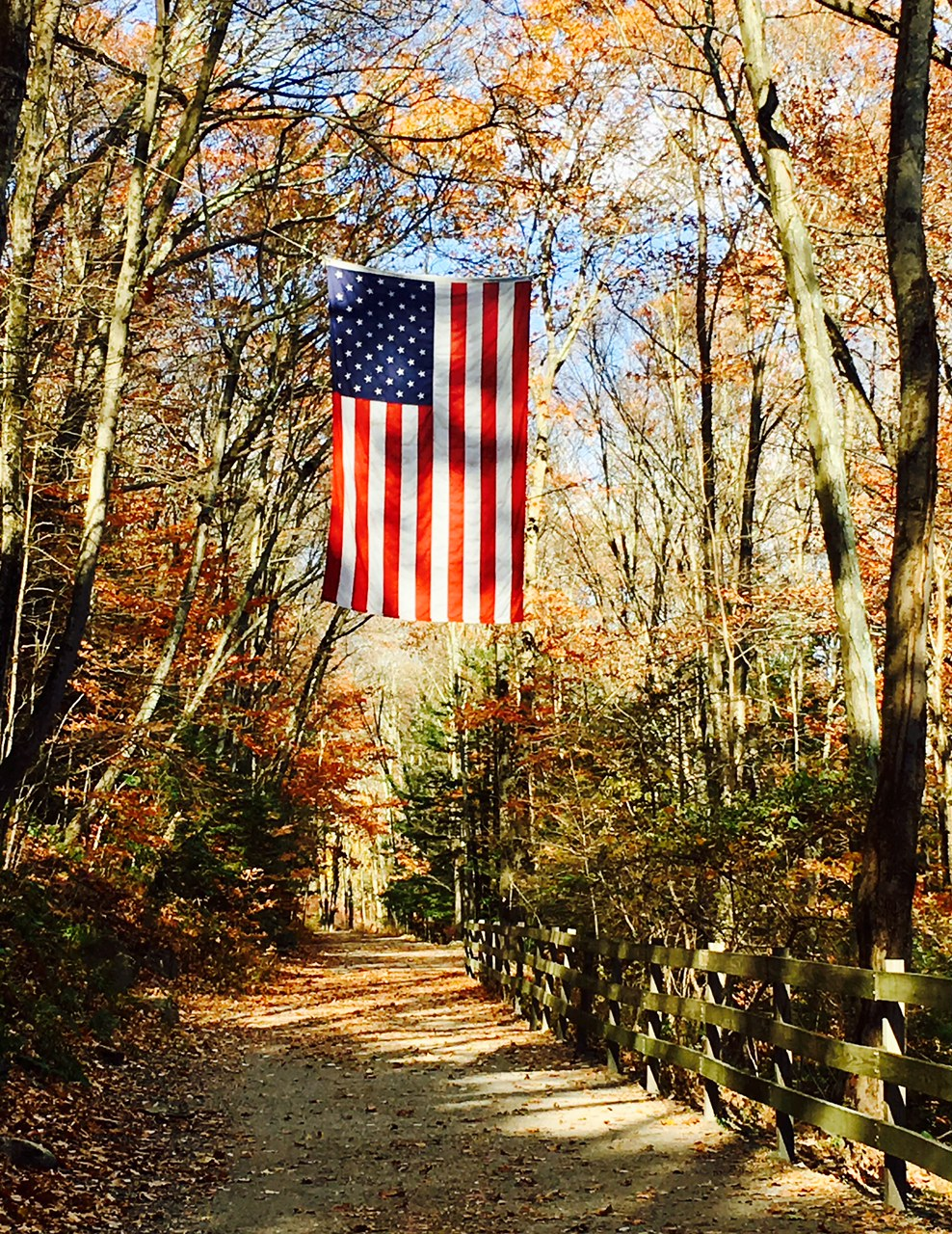 2 years ago - A Veteran's Day ramble with Brian & Leo on the Pequonnock River Trail in Trumbull, CT.