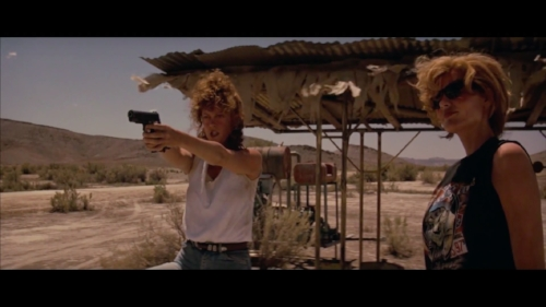 By showing agency, Thelma and Louise flipped the traditional roles of men and women in films