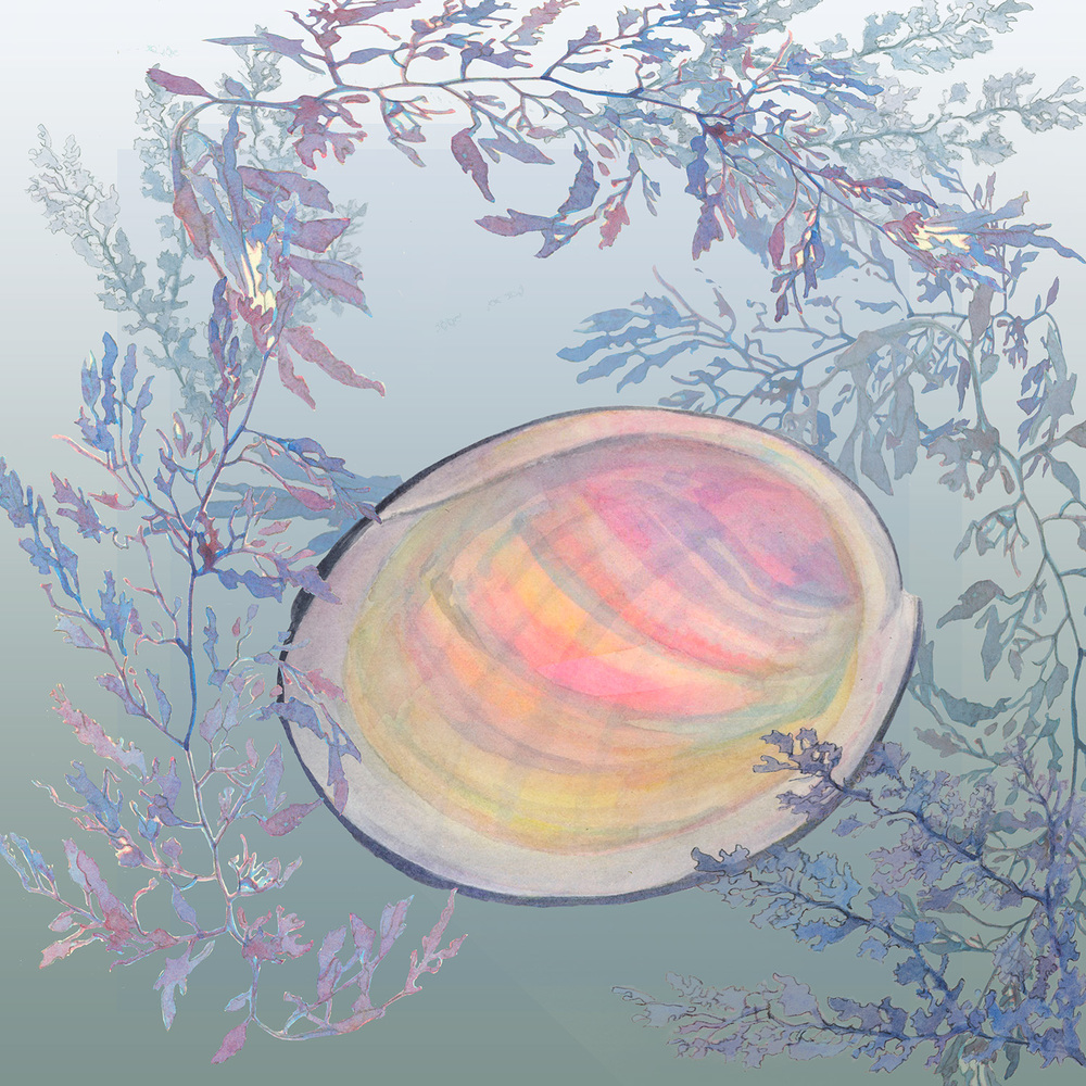 seafloor 9psd.jpg