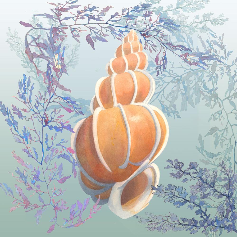 seafloor copy 12.jpg