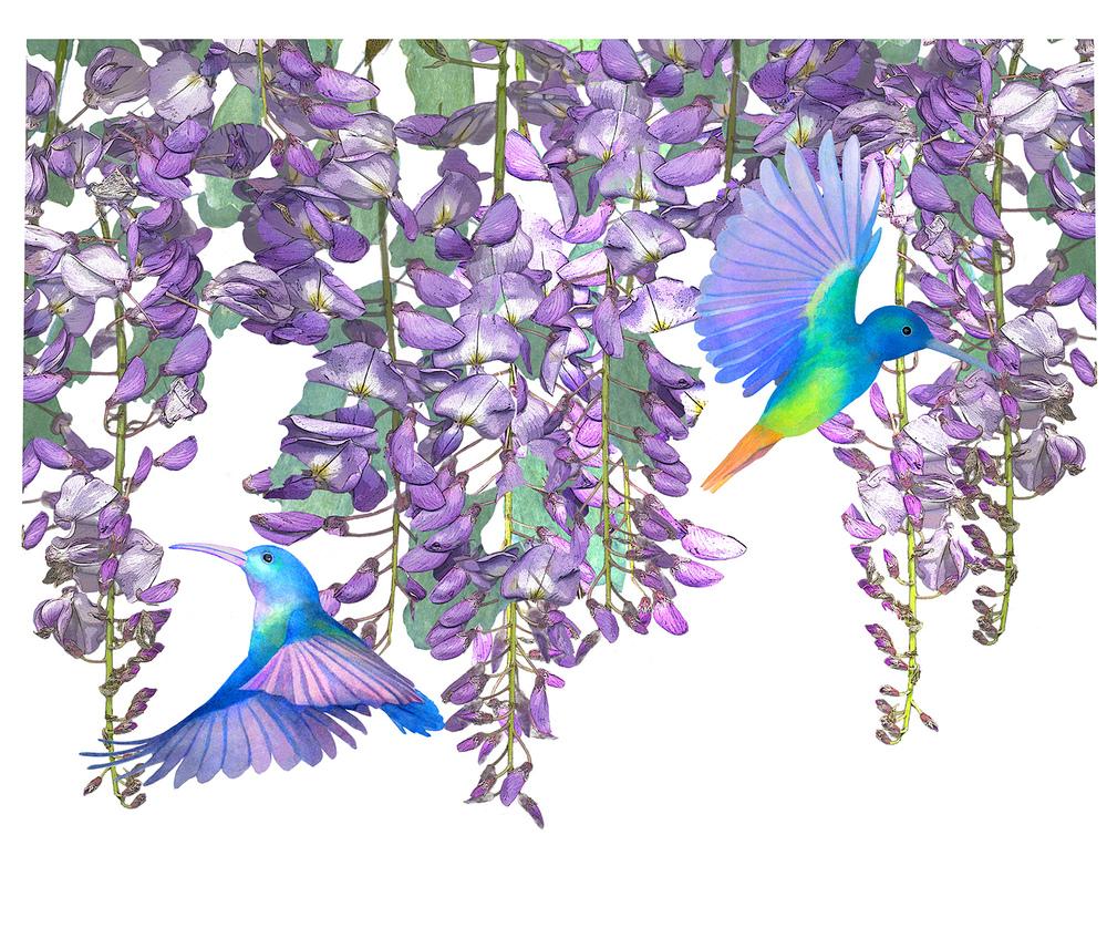 birdstuff copy6.jpg