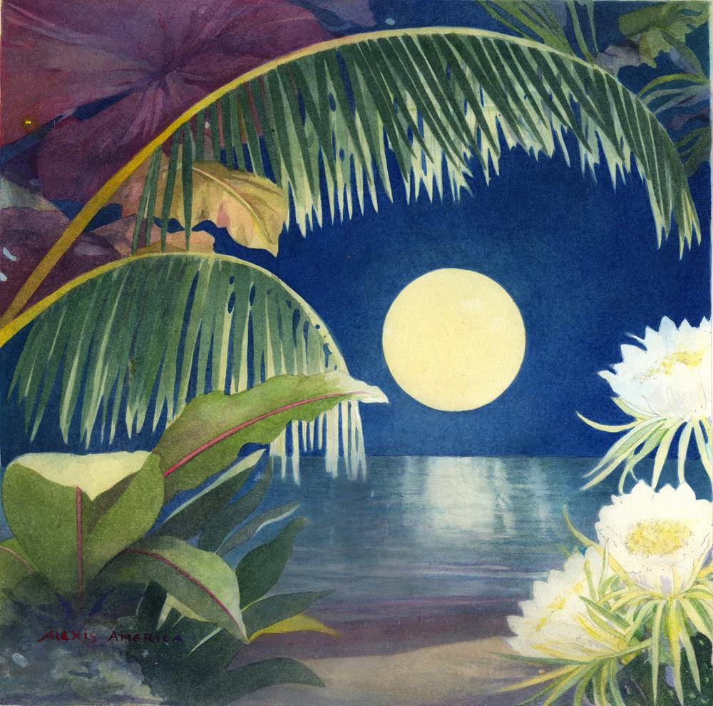 tropical moon copy.jpg