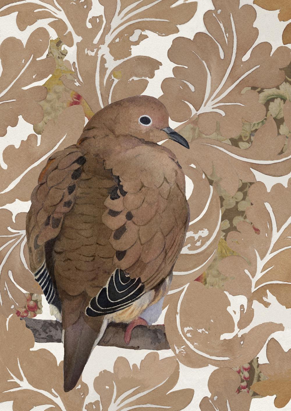 dove2psd.jpg