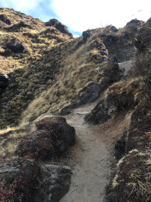 trail2.png