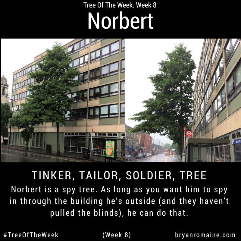Week8-Norbert1SFW.jpg