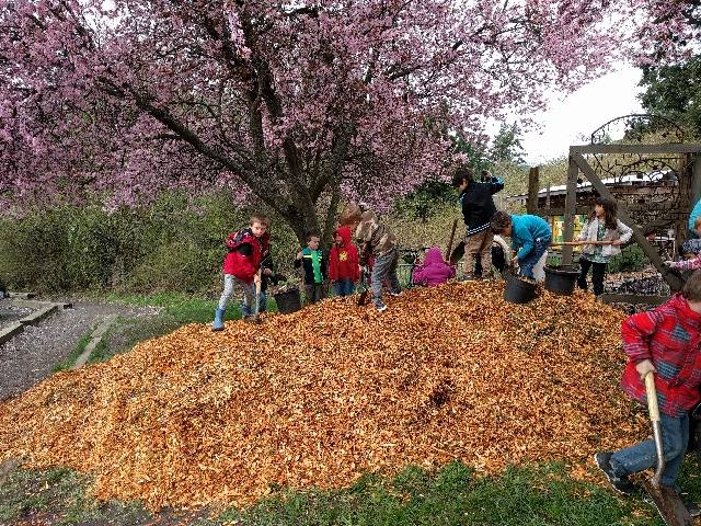 march2017woodchips3.jpg