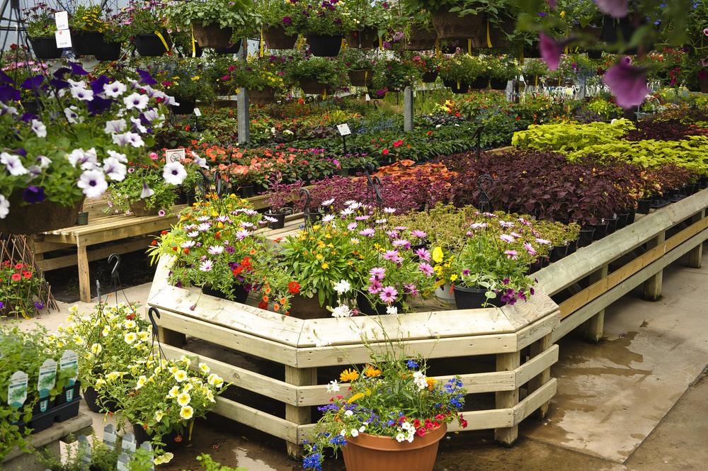 Bloom_JN2011_079.jpg