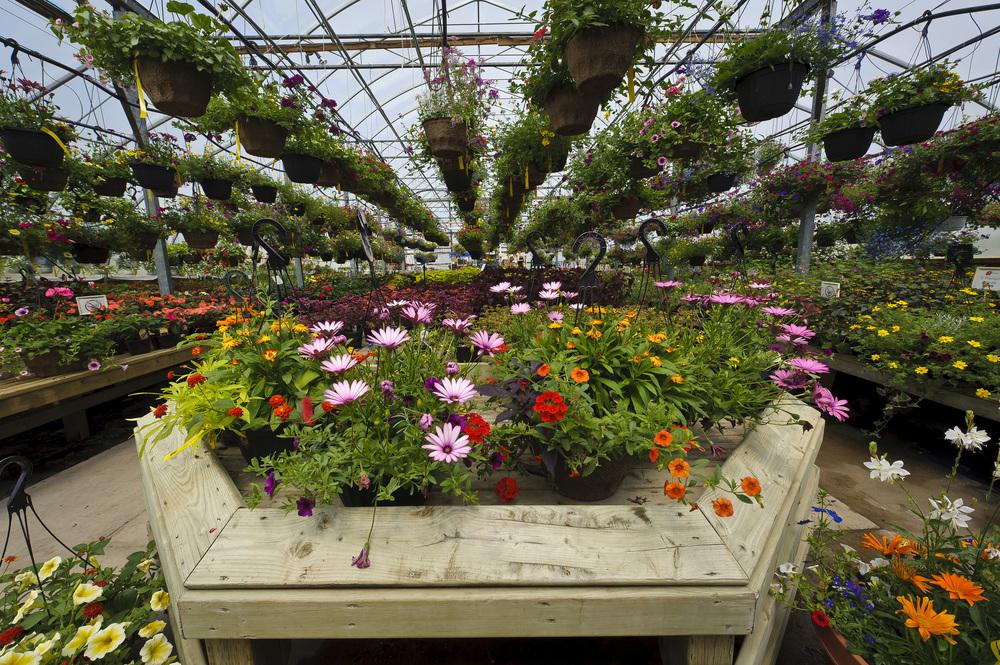 Bloom_JN2011_090.jpg