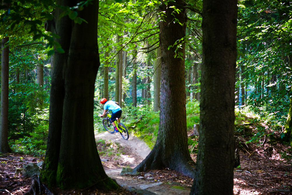 Our tours... - are private so that every customer to feel relaxed and to enjoy the local trails under the full attention of our local guides.are mountain biking tours in Prague and in Czech Republic for all levels: from beginners to advanced riders.are not bulk tours or big mixed groups because we understand that each person is unique and has different needs and expectations.