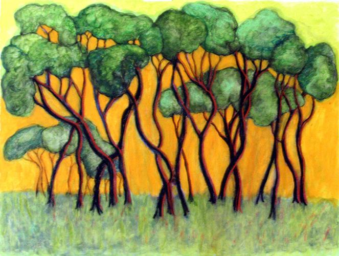 Manzinita Trees