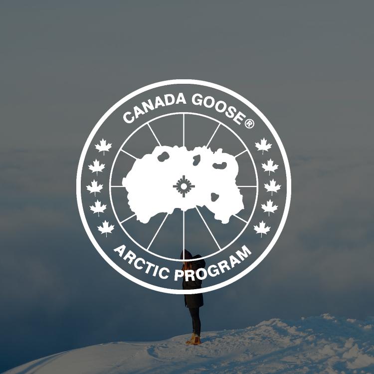 canada goose icon.jpg