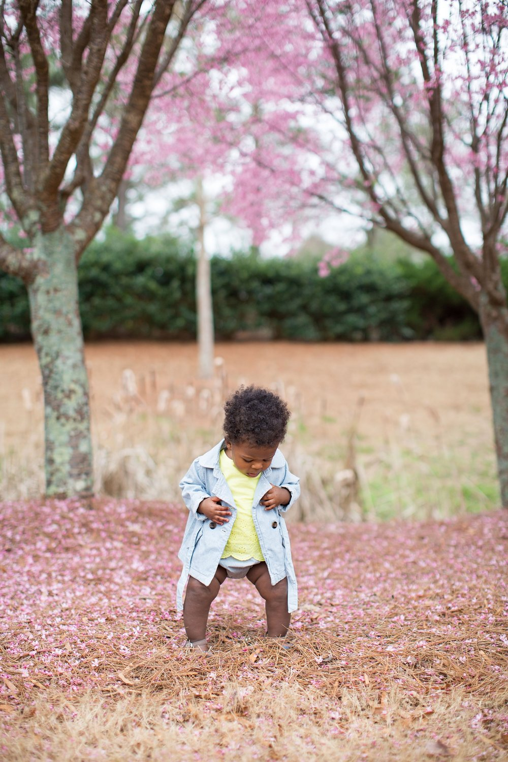 Little girl in field with pink flowers