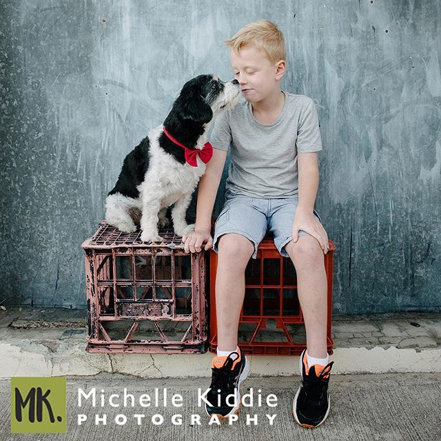 They say never work with children or animals. Well, I seriously disagree with whoever came up with that rule as these two were just delightful. Nothing quite like the friendship between a boy and his dog. #michellekiddiephotography #perthfamilyphotographer #boyandhisdog #perthportraitphotographer