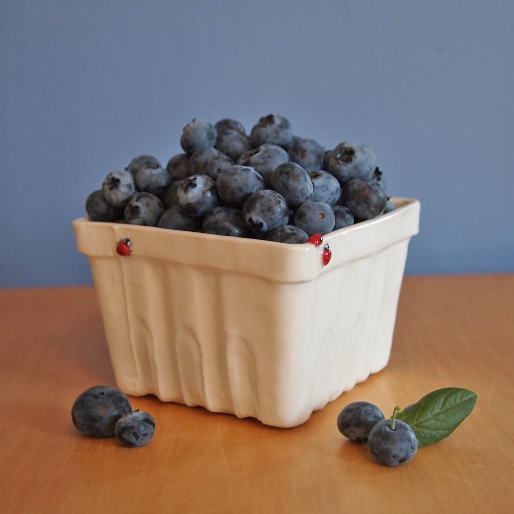 berry basket blueberries3.jpg
