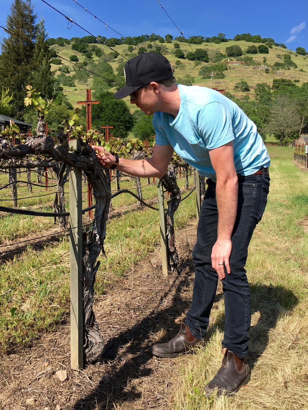 Blair tending to a vine during bud break ( Photo: Mike Casey, The 29 Napa )