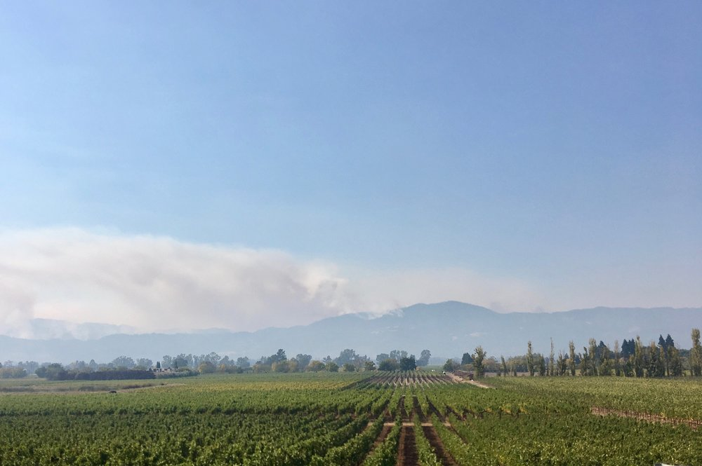 Smoke on the horizon from Silverado Trail ( Photo: Mike Casey,The 29 Napa )