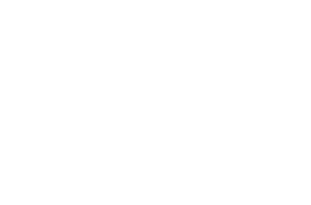Visualex.png