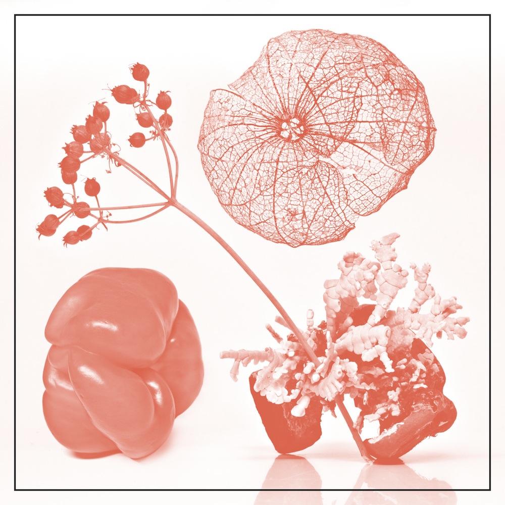 "Tasteful Nudes / Starflyer 59 split 7"" (2015)"