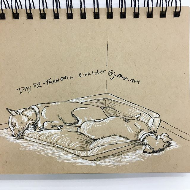 "#inktober2018day2 : ""tranquil"" 🖋 Doggie snooze. My dogs Adrian and Maverick. . . #inktober #jreneart #art #artistofinstagram #seattleartist #pnwartist #pnw #tranquil #ink #inkdrawing #tonedpaper #create #jhsinktober #inktober2018 #inktoberday2 #dogs #furbaby #dog #dogsofinstagram #blackmouthcur #boxer #boxermix"