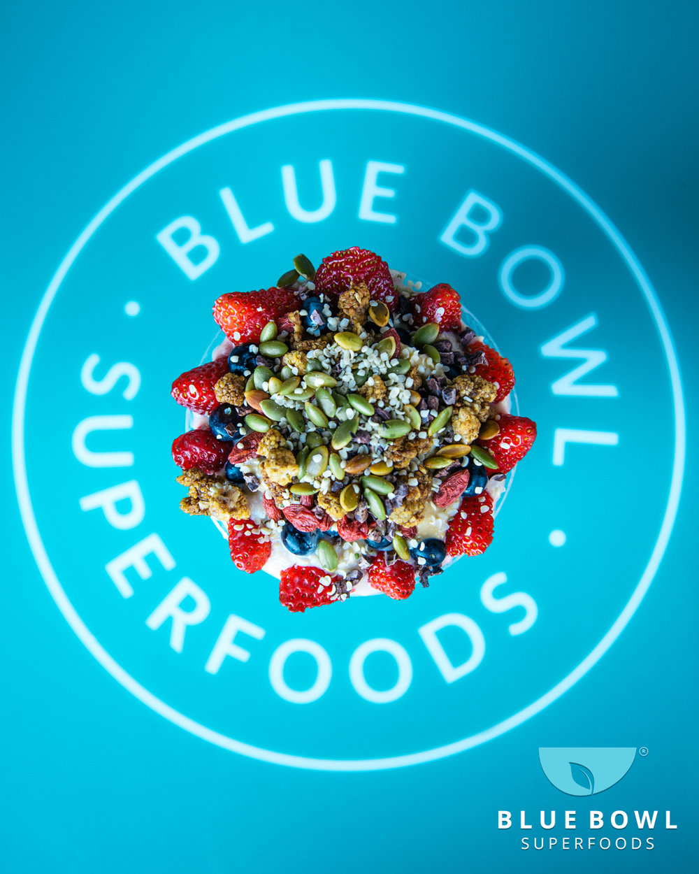 BlueBowl-IG-011819-TopView.jpg