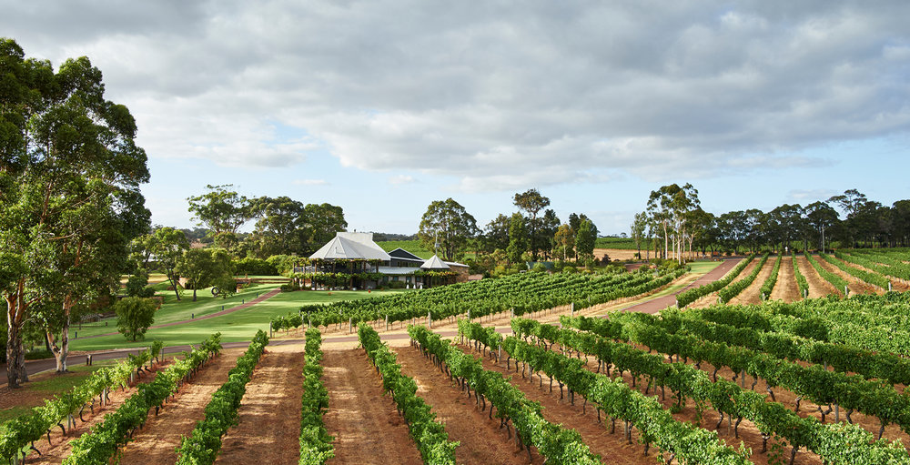 Vasse Felix Vines and Restaurant  |  VASSE FELIX