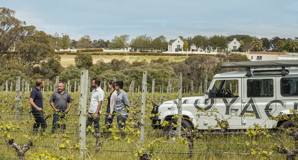 Afterwards you will embark on a four-wheel drive exploration of Voyager Estate's vineyards, underground cellar, barrel hall and kitchen gardens and the opportunity to taste wines straight from the barrel, followed by a guided tasting