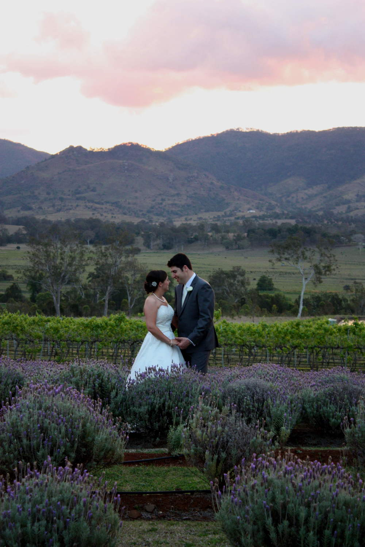 lavender fields 1.JPG