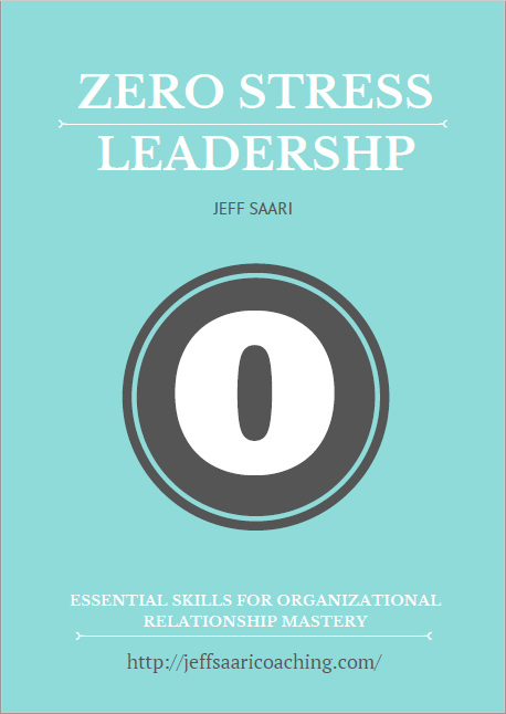 book zero less leadership