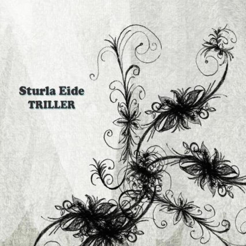 Sturla Eide - Triller   Ronny Kjøsen: musiker (trekkspel, trøorgel)   Her kan du høre Sturla Eide på spotify