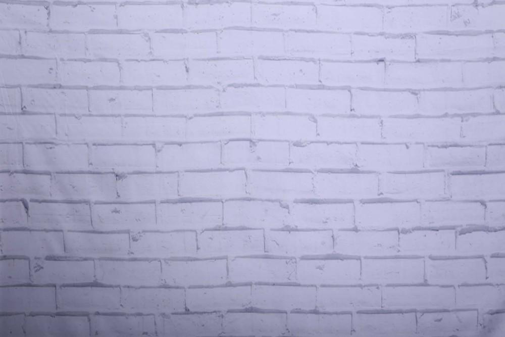 Copy of WHITE BRICK WALL