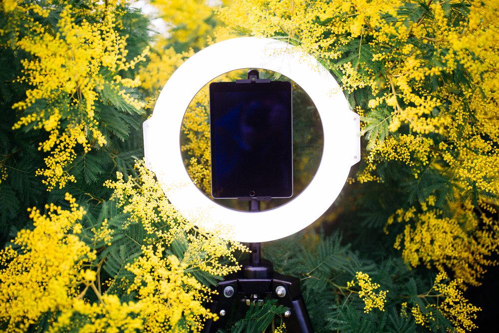 GIF Booth Sydney.jpg