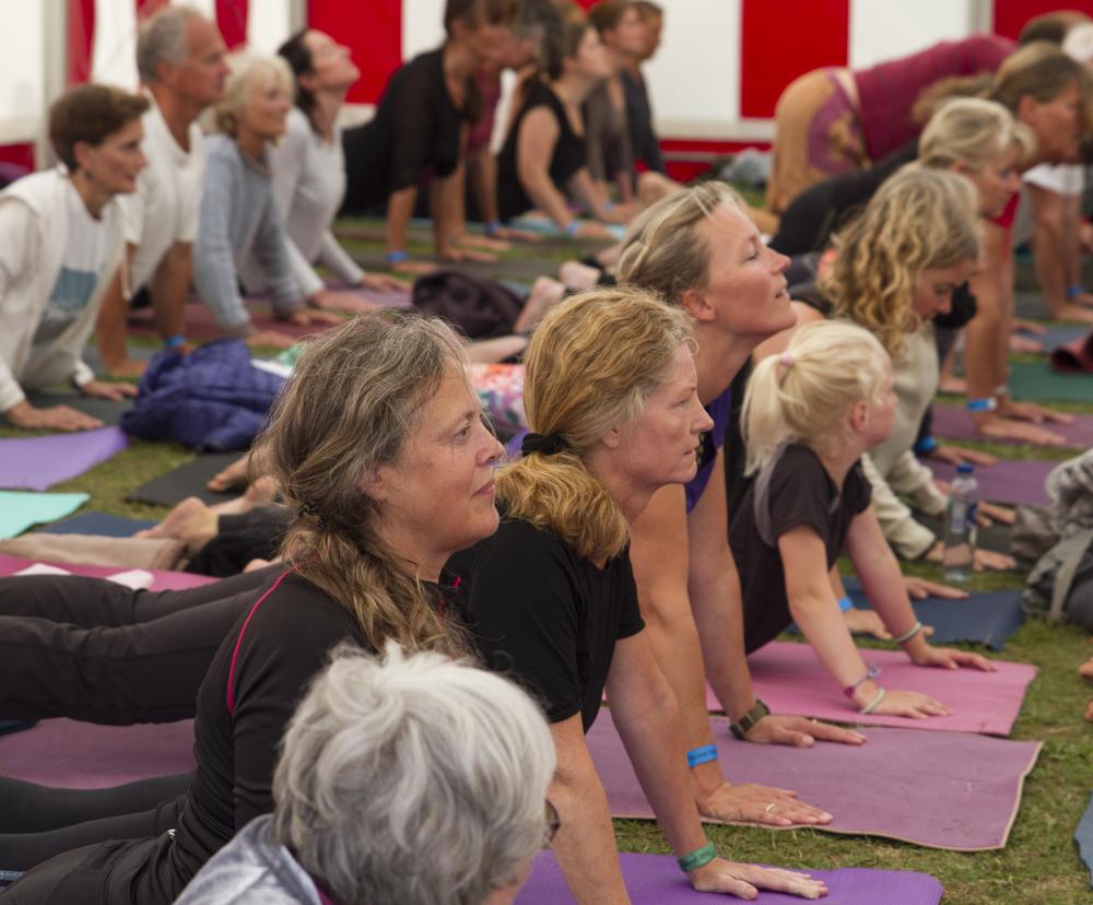 yogafest17.jpg