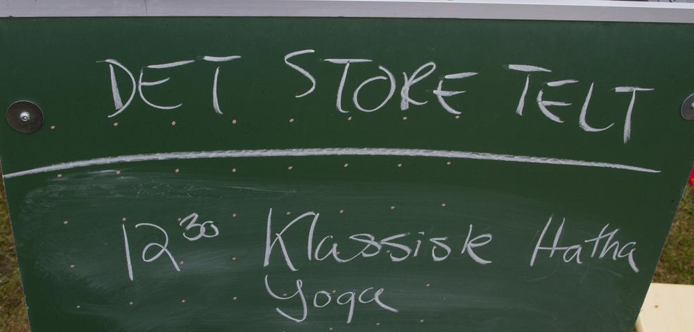 yogafest20.jpg