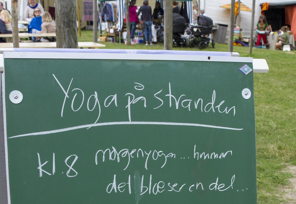 yogafest27.jpg