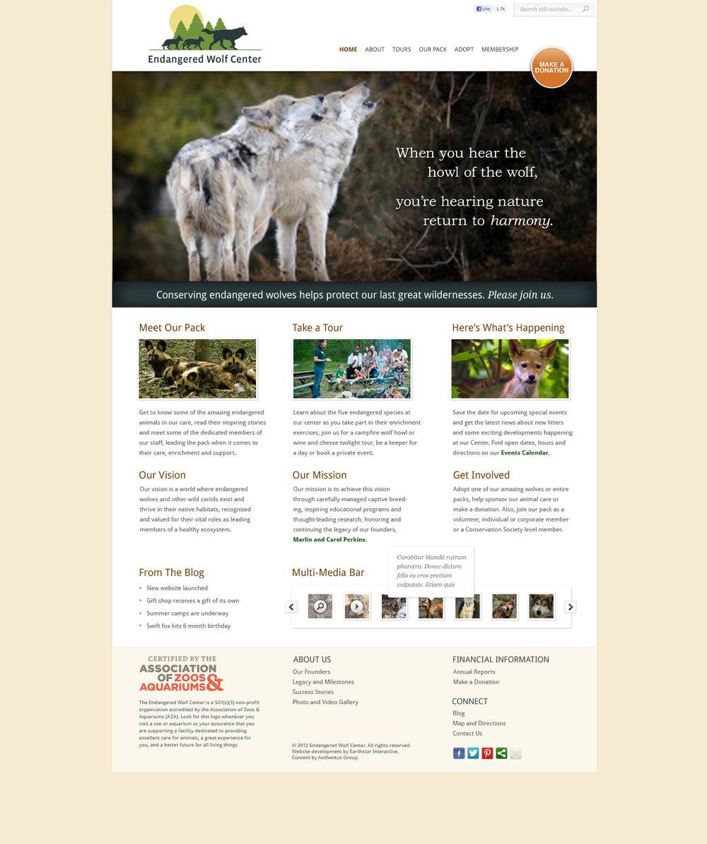 EWC_WebsiteDesign_Page_2.jpg