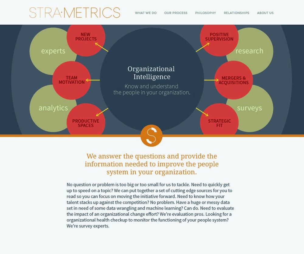 StraMetics_WebsiteDesign_Page_1.jpg
