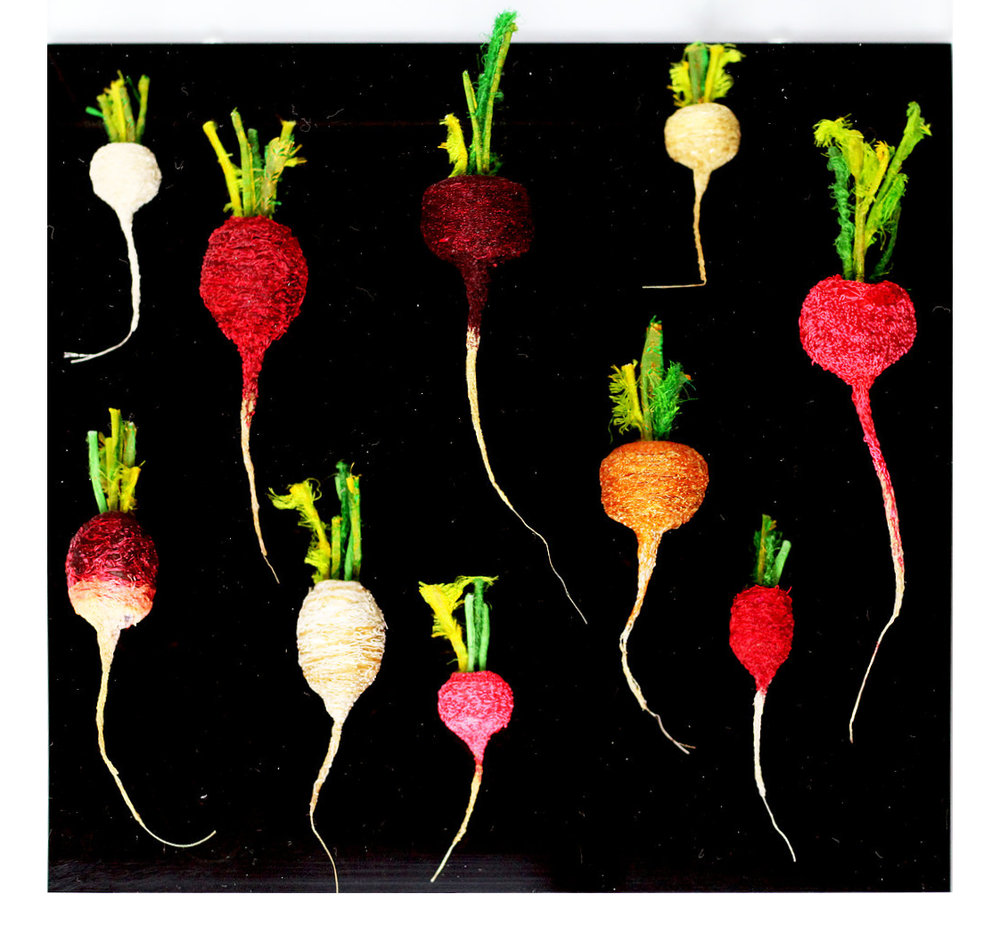 Radishes x10 by Amanda Cobbett.jpg
