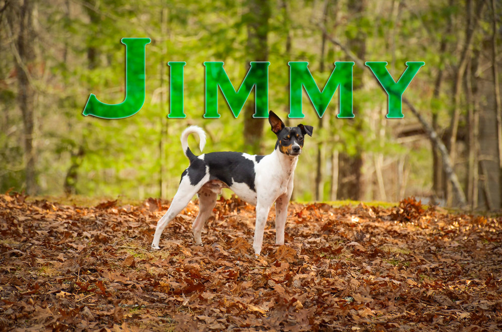 Jimmy-Name-Web-2359.jpg