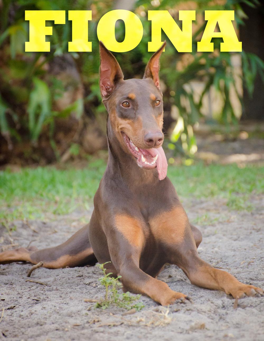 Fiona-Web-Name-DSC_9799.jpg