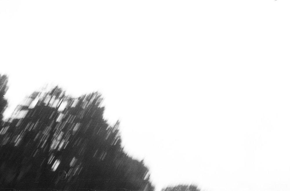 20180824_ImpGardTky_002.jpg